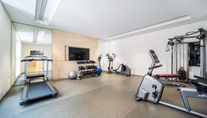 District One, Home Gym