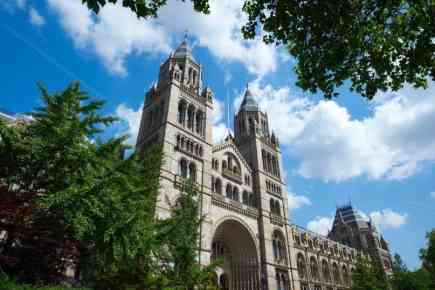 Natural History Museum in London, UK - All You need to Know