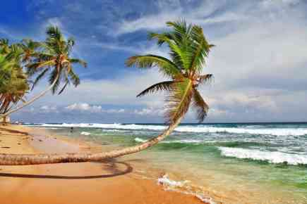 Investment Opportunity: Exclusive Beachfront Hotel for Sale in Sri Lanka