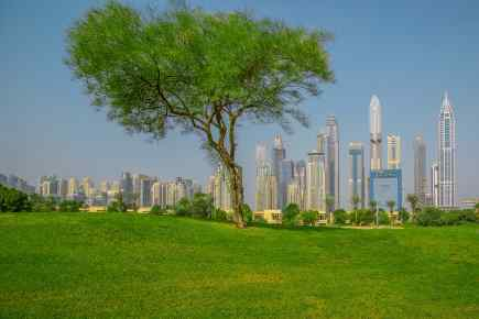 Here's What You Need to Know About the UAE Green Visa