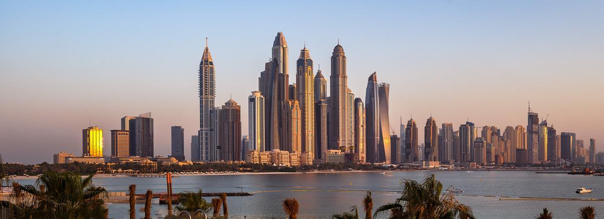 Dubai Company Ownership