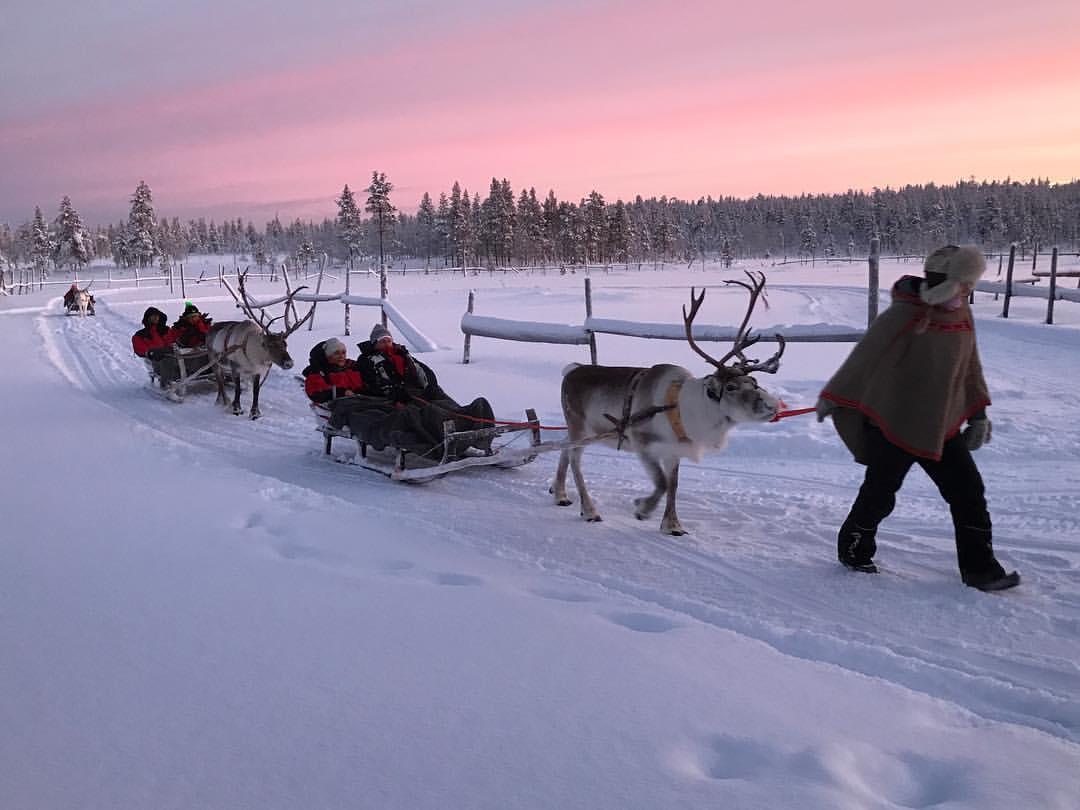 Winter_Safari_in_Finland